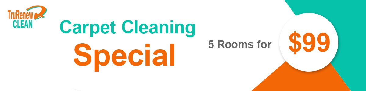 When cleaning just won't do - TruRenew Carpet Cleaning