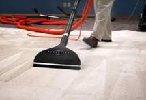 Plano Carpet Cleaning