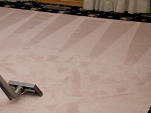 Celina Carpet Cleaning