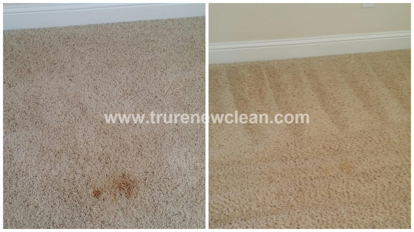 Furniture Stain in Denton TX