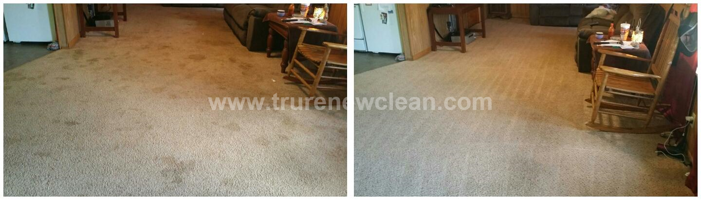 Carpet Cleaning in Frisco, TX