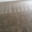 Carpet Cleaning in Allen - After