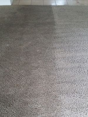 Carpet Cleaning in Allen, Before and After