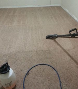Carpet Cleaning Service in Garland, Texas