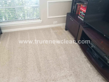 Carpet Cleaning Service in Keller, Texas