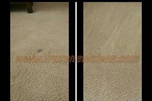 Carpet Graft Cleaning in Prosper, TX