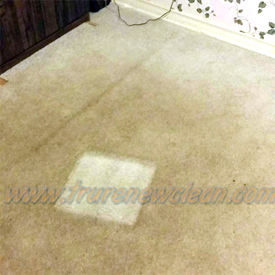 Carpet Cleaning Service in Dallas, Texas