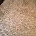 Steam Carpet Cleaning in Plano, TX