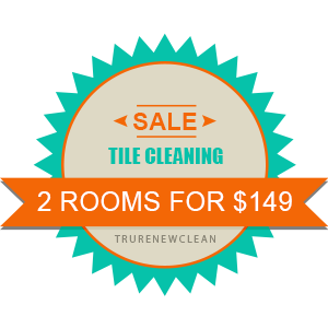 TruRenew Clean Tile Cleaning Specials