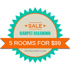 TruRenew Clean Carpet Cleaning Specials