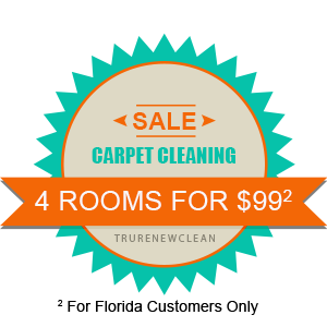 Florida Customer Carpet Cleaning Special - 5 Rooms for $99